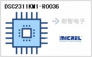 DSC2311KM1-R0036