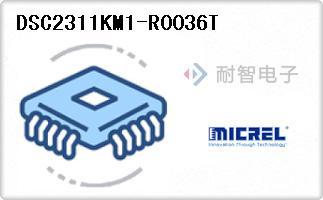 DSC2311KM1-R0036T