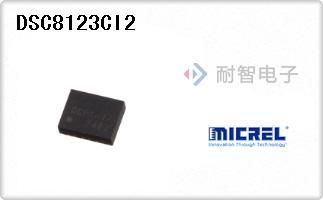 DSC8123CI2