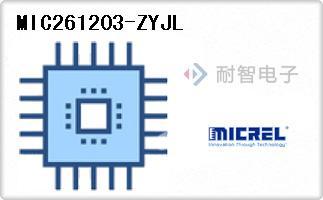 MIC261203-ZYJL