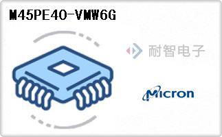 M45PE40-VMW6G