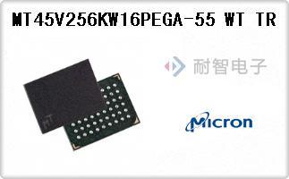 MT45V256KW16PEGA-55 WT TR