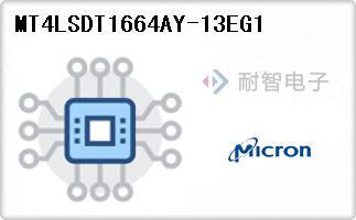 MT4LSDT1664AY-13EG1