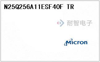N25Q256A11ESF40F TR