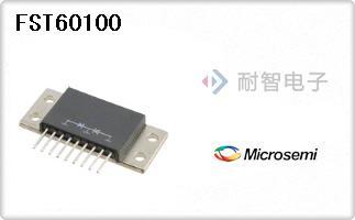 FST60100