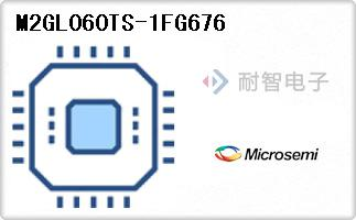 M2GL060TS-1FG676