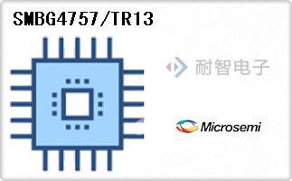 SMBG4757/TR13