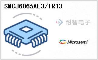 SMCJ6065AE3/TR13代理