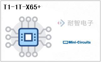 T1-1T-X65+