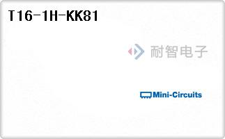 T16-1H-KK81