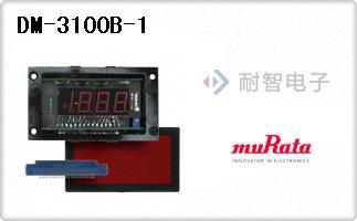 DM-3100B-1