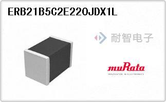 ERB21B5C2E220JDX1L