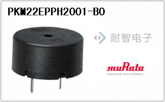 PKM22EPPH2001-B0