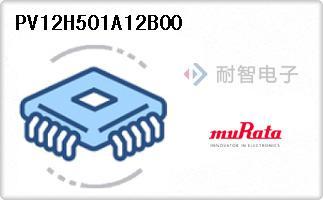 PV12H501A12B00