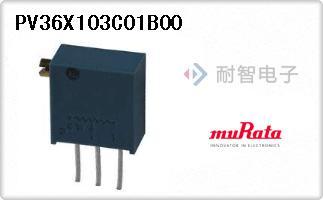 PV36X103C01B00