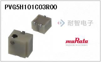PVG5H101C03R00