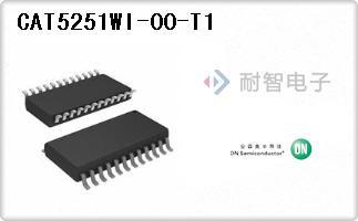 CAT5251WI-00-T1