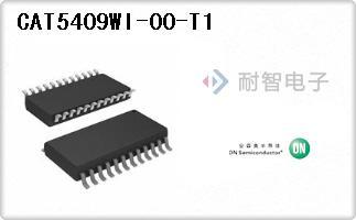 CAT5409WI-00-T1