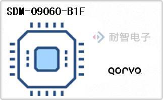 SDM-09060-B1F
