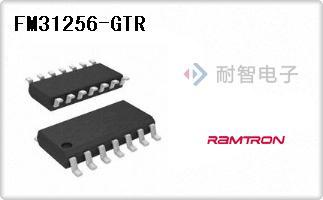 FM31256-GTR