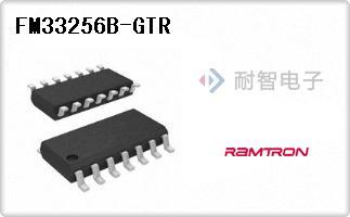 FM33256B-GTR
