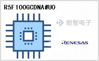 R5F100GCDNA#U0