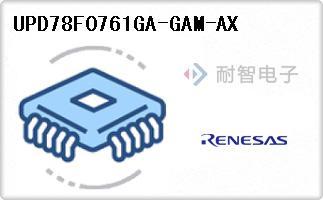 UPD78F0761GA-GAM-AX