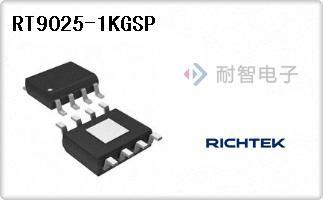 RT9025-1KGSP
