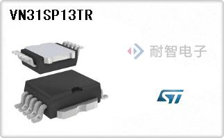 VN31SP13TR