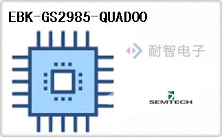 EBK-GS2985-QUAD00