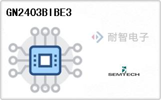 GN2403BIBE3