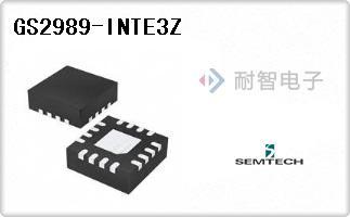 GS2989-INTE3Z