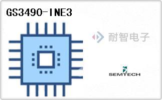 GS3490-INE3