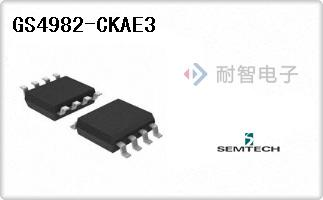 GS4982-CKAE3