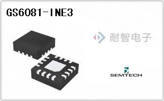 GS6081-INE3