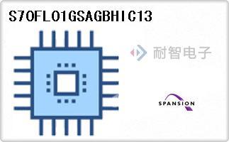 S70FL01GSAGBHIC13