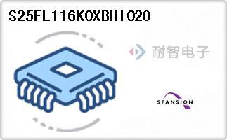 S25FL116K0XBHI020