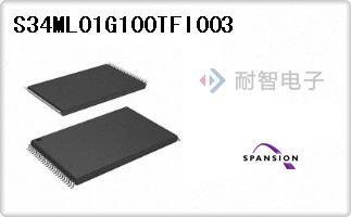 S34ML01G100TFI003