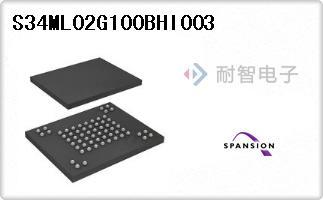S34ML02G100BHI003