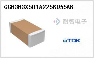 CGB3B3X5R1A225K055AB