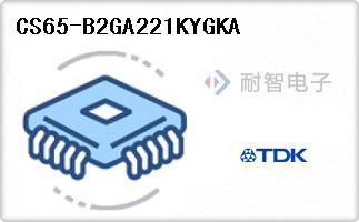 CS65-B2GA221KYGKA