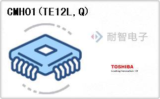 CMH01(TE12L,Q)