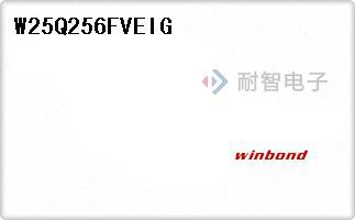 W25Q256FVEIG
