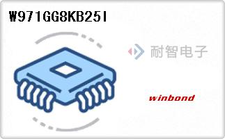 W971GG8KB25I
