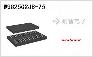 W9825G2JB-75