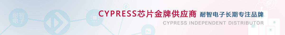 耐智电子是Cypress公司在中国的代理商