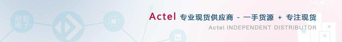 耐智电子是Actel公司在中国值得信赖的Actel代理商