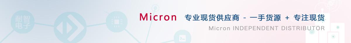 耐智电子是Micron公司在中国值得信赖的Micron代理商