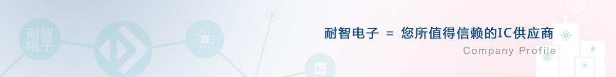 耐智电子公司介绍
