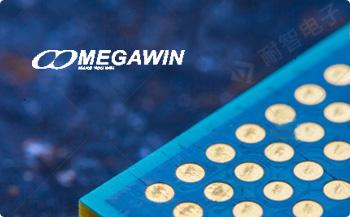 Megawin公司的主要产品